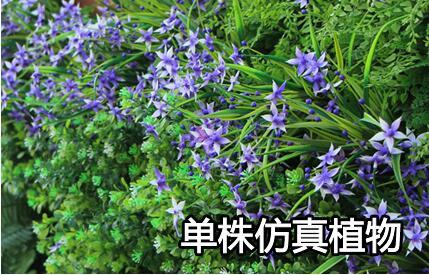 单株仿真植物.jpg