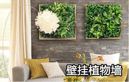 壁挂植物墙.jpg