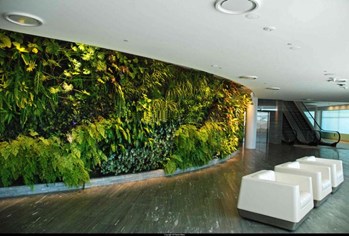 办公场所仿真植物墙.jpg